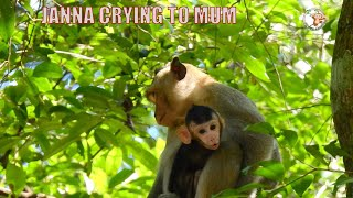VERY PITY JANNA IS CRYING TO MUM HELP HER BACK . SHE FORGIVE TAZANA ,BUT NO RESPOND# monkey #