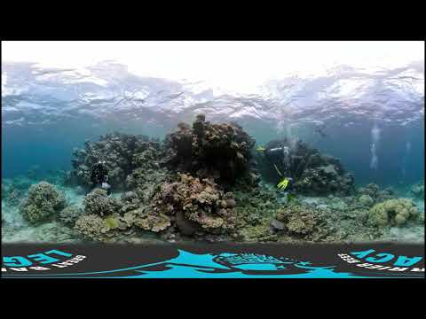 360 Virtual Reality SCUBA Dive with the GBR Legacy team