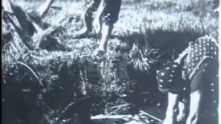 Farming life in Germany, 1940's - Film 32690