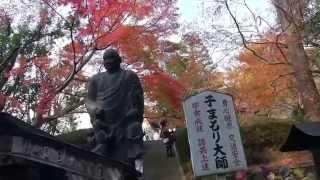 今熊野観音寺は後白河天皇(法王)ゆかりの頭痛封じの観音さま。泉涌寺は...