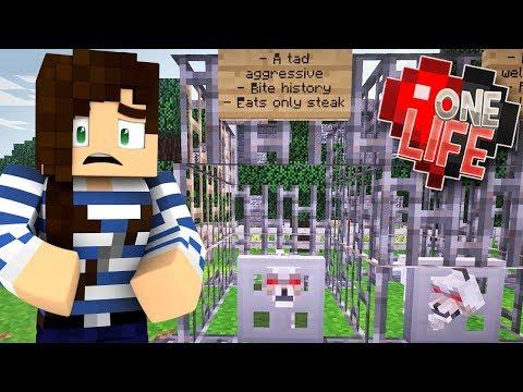 Hostile Wolf Shelter! - One Life Minecraft...