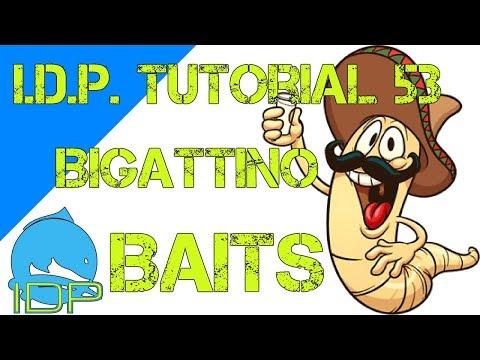 PESCARE CON IL BIGATTINO - BAITS #4