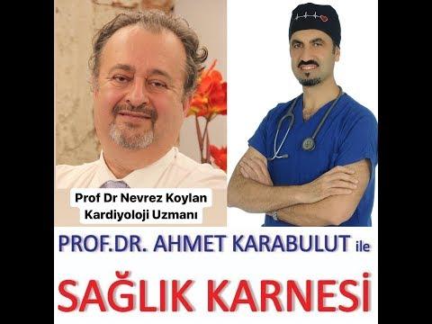 FAST-FOOD VE HAZIR GIDANIN SAĞLIĞA ETKİSİ - PROF DR NEVREZ KOYLAN - PROF DR AHMET KARABULUT