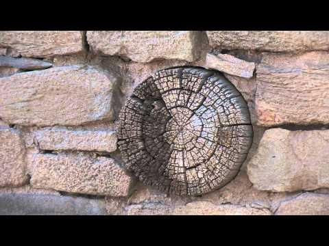 Aztec Ruins Tour 2 - Green Wall