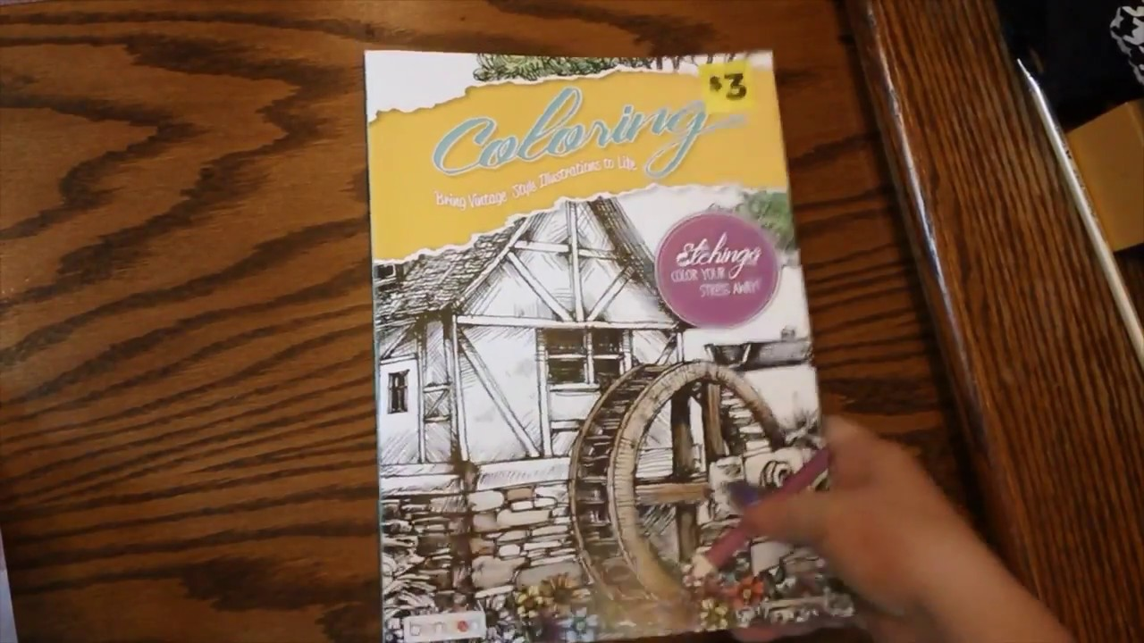 Small Dollar General Haul Adult Coloring Books April 2017