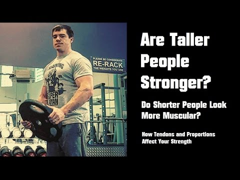 Download Youtube: Are Taller People Stronger? How Limb Proportions and Tendons Affect Strength