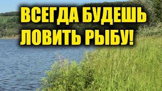 Вы всегда будете ловить рыбу зная эти простые правила и секреты ловли рыбы. Секреты рыбалки