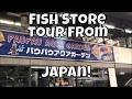 Japanese Fish Store Tour PauPau Ginza Japanese Fish Shop tour in Japan ADA Store