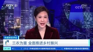 """《央视财经评论》 20201229 """"三农""""为重 全面推进乡村振兴  CCTV财经 - YouTube"""