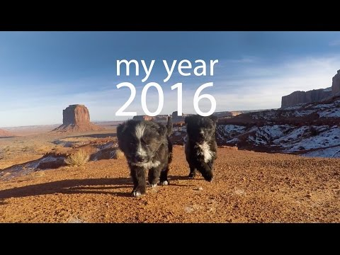 MY YEAR | 2016 Review