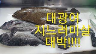 [광어.우럭.감성돔 회뜨기]광어 지느러미살 대박!!!