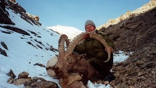 Video IBEX TIAN SHAN KIRGHIZSTAN hunting (Chasse) since 1990 by Seladang download MP3, 3GP, MP4, WEBM, AVI, FLV Juni 2018