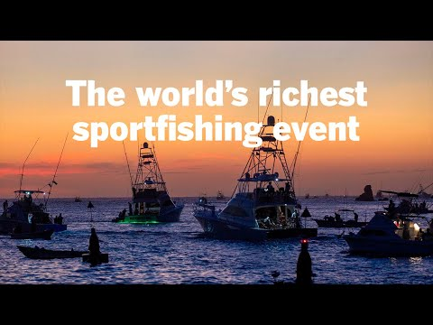 The World's Richest Sportfishing Event: Bisbee's Black & Blue Marlin Tournament