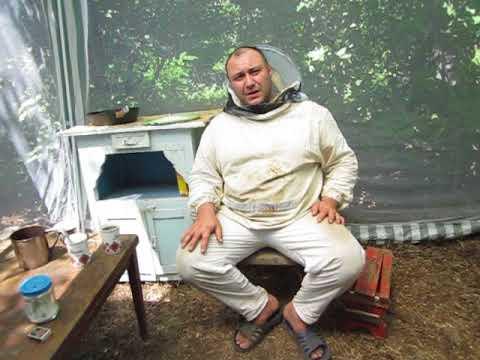 Легкая работа на дому украина 1