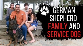 German shepherd as a family dog and service dog | Service dog training