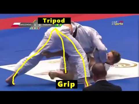 Xande Ribeiro vs Adam Wardzinski | Match Study
