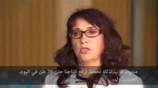 Видеоролик перевода на арабский язык - субтитры
