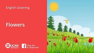 Learn English Via Listening | Beginner - Lesson 31. Flowers