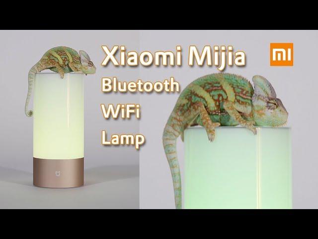 Xiaomi Nachttischlampe Xiaomi Philips Zhirui Leuchtmittel