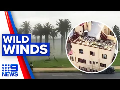 Clean-up underway after wild winds lash Melbourne | 9 News Australia thumbnail