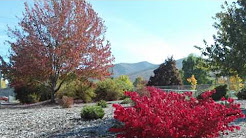 Indian Summer in Talent,Oregon
