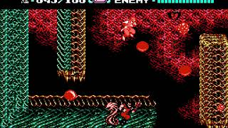 [TAS] NES Ninja Gaiden II: The Dark Sword of Chaos by xipo & Samsara in 09:12.34