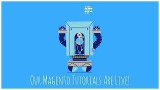 كيفية إنشاء منتج في الماجنتو
