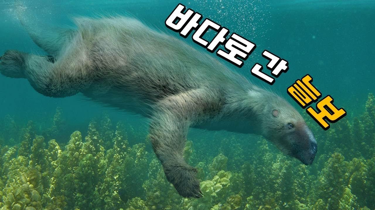 옛날 옛날엔 나무늘보가 바다에도 살았었대요! ^.^