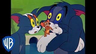 Tom et Jerry en Français | Tom a Sommeil | WB Kids