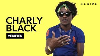 "Charly Black ""Gyal You A Party Animal"" Official Lyrics & Meaning 