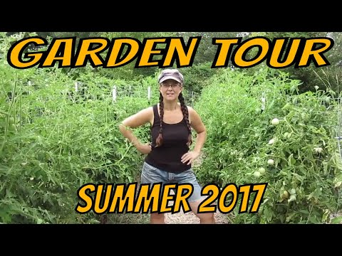 Organic Garden Tour Summer 2017 - Heirloom Tomatoes, Peppers, Cucumbers, Melons, Herbs and More!