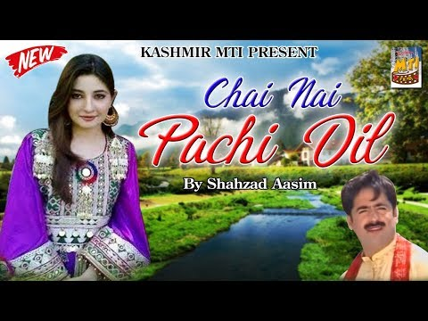 Chai Nai Pachi Dil Lyrics  Dilbar {New Kashmiri Folk Song} Lyrics  Dilbar