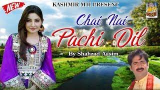 Chai Nai Pachi Dil Lyrics  Dilbar {New Kashmiri Folk Song} Lyrics  Dilbar