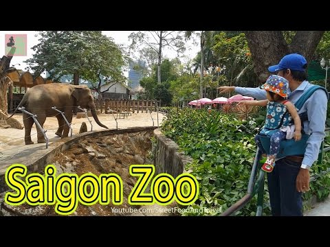 Vietnam Travel - Saigon Zoo and Botanical Gardens. Thao Cam Vien Ho Chi Minh city