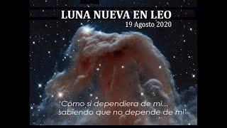 COMO SI DEPENDIERA DE MI...  LUNA NUEVA EN LEO. 19 AGOSTO 2020
