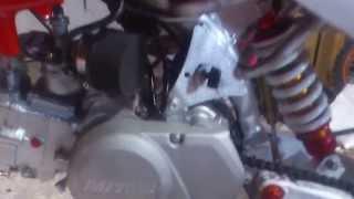 upgraded pitpro 140cc daytona pitbike