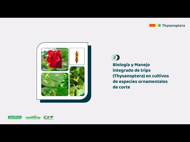 Biología y manejo integrado de trips en especies ornamentales de corte
