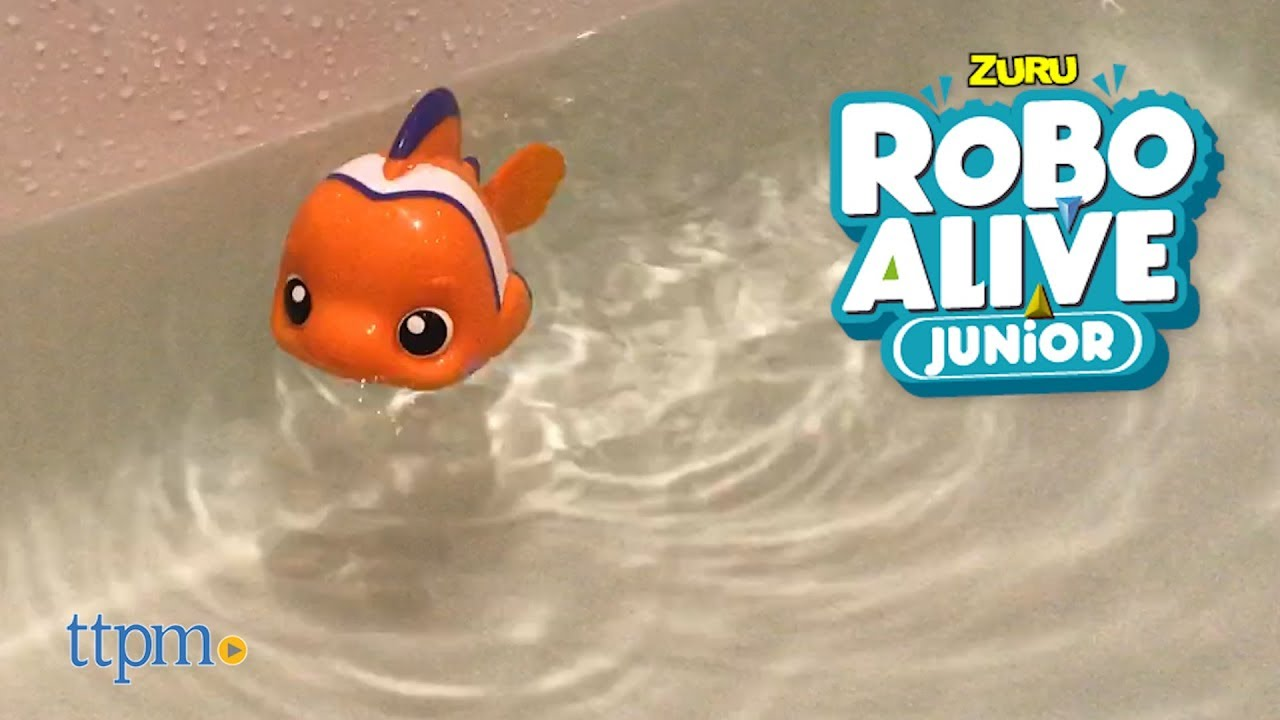Robo Alive Junior Little Fish From Zuru Youtube
