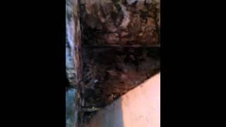 видео Входные металлические двери в Луховицах