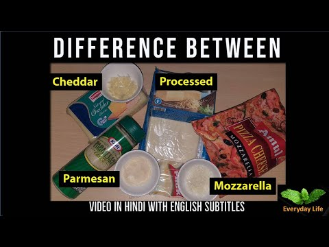 Difference B/w Mozzarella, Processed, Cheddar & Parmesan Cheese | चीज़ के प्रकार  | Everyday LIfe