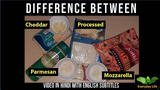 Difference b/w Mozzarella, Processed, Cheddar & Parmesan Cheese   चीज़ के प्रकार    Everyday LIfe