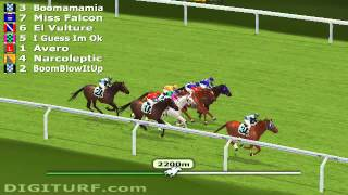 Best Virtual Horse Racing Game