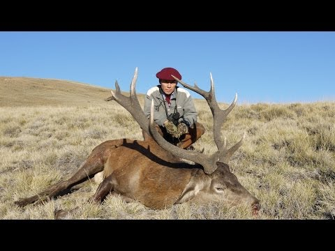 RED STAG hunting in ARGENTINA. Chasse du CERF ELAPHE dans les ANDES ARGENTINES by Seladang