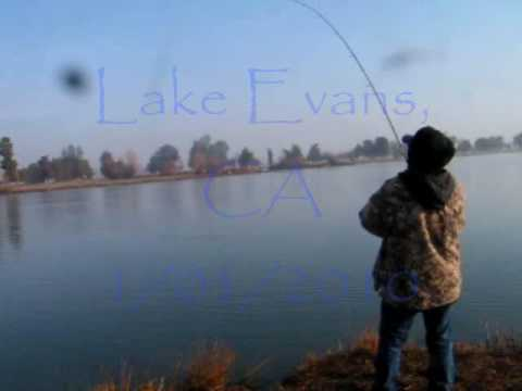 Trout fishing buena vista ca youtube for Fishing without a license california