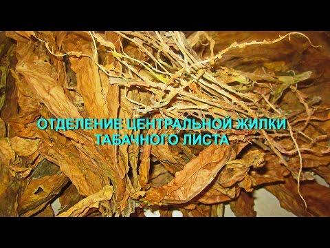 - все о кальяне и табаке: обзоры, инструкции, отзывы