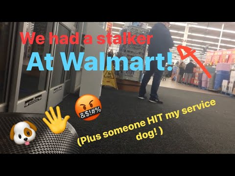 HE HIT MY SERVICE DOG! + Being Stalked In WALMART! Service Dog Harassment