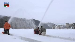 Гусеничные снегоуборщики Ariens и Honda