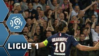 Zlatan Ibrahimovic : his 19 goals of the season 2014/2015 - Ligue 1