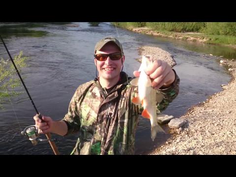 Как поймать крупную рыбу. Голавль.