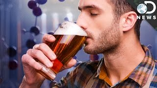 Creating The Perfect Craft Beer with Genetic Engineering